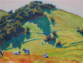 Shadows Near Nicasio, Marin 12x16